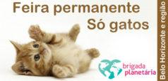 Feria permanente so gatos Brigada Planetaria topo