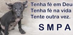 SMPA Fev15