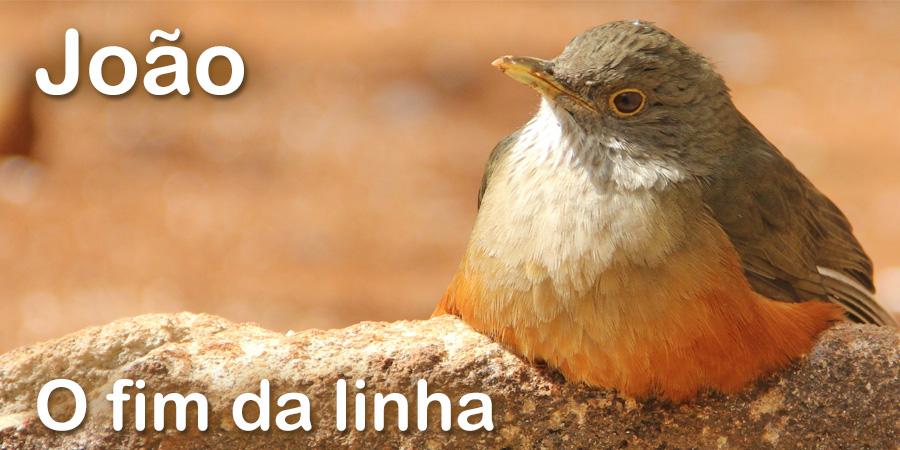 Joao Ago15
