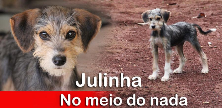 Julinha