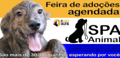 Feira agendada SPA Animal