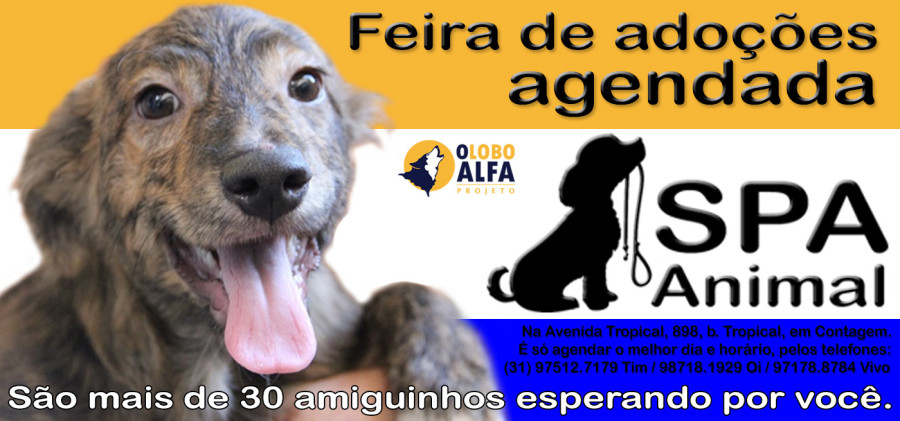 Feira agendada SPA Animal