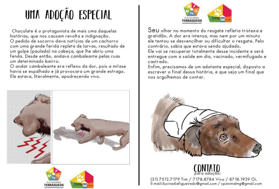 Chocolate fev16-0015-pt-mgC