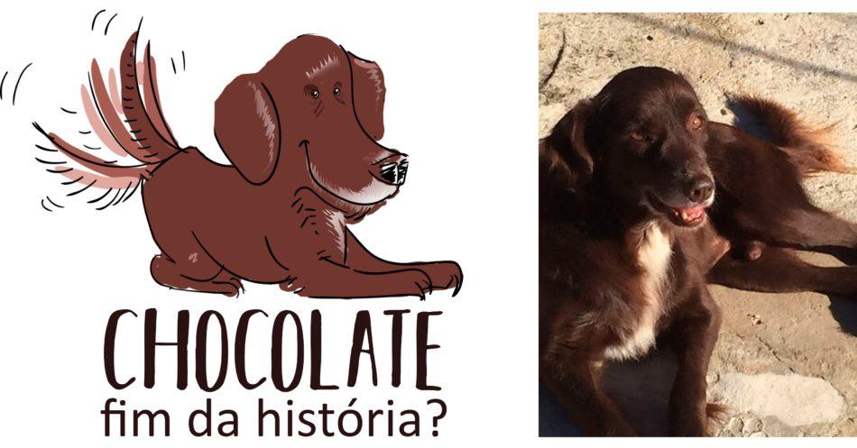Chocolate fim da história