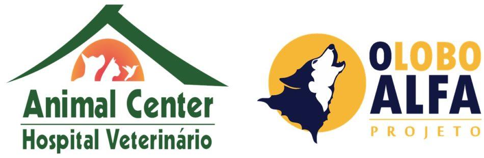 Zezinho logo